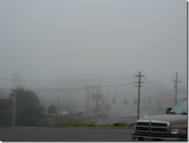 advection fog low visiblity lincoln city