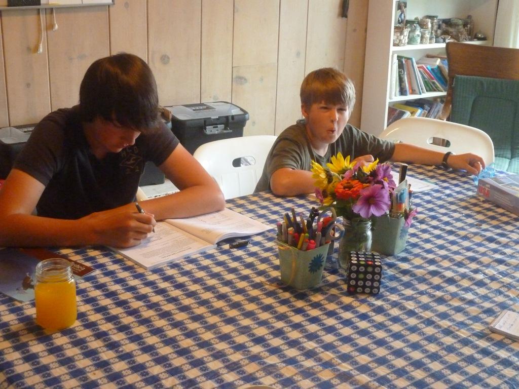 homeschooling in the newspaper pebblekeeper. Black Bedroom Furniture Sets. Home Design Ideas