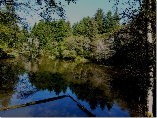 Spring lake, Lincoln City, oregon